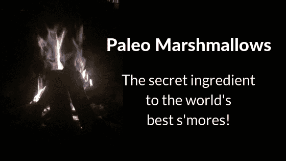 Paleo Marshmallows Make the Best S'mores!
