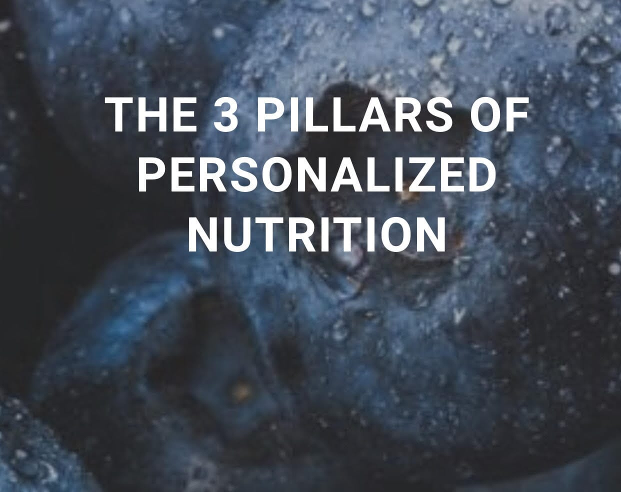 The 3 Pillars of Personalized Nutrition