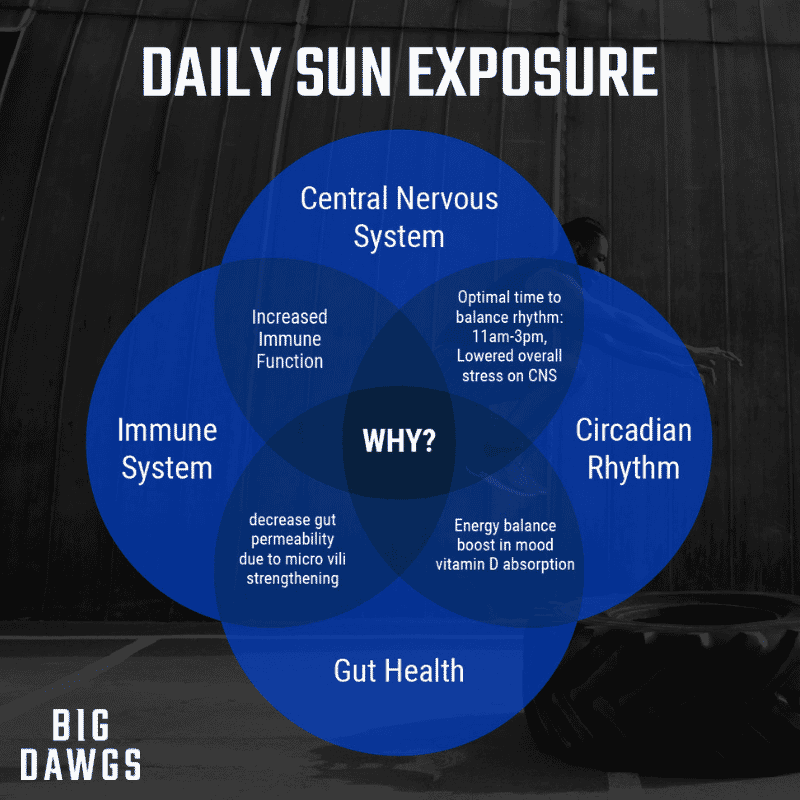 Daily Sun Exposure