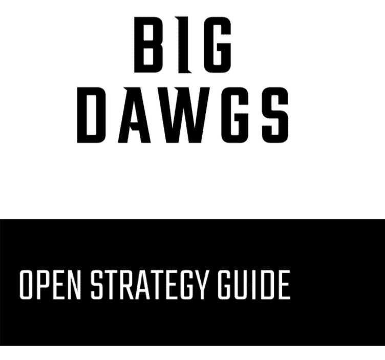 Open Strategy Guide: 19.1