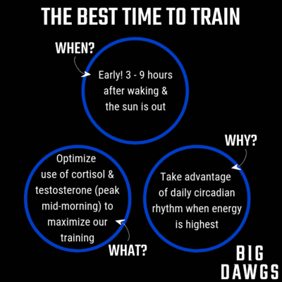 The Best Time to Train