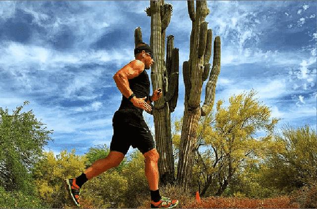 Torrey Penn | Big Dawgs Athlete