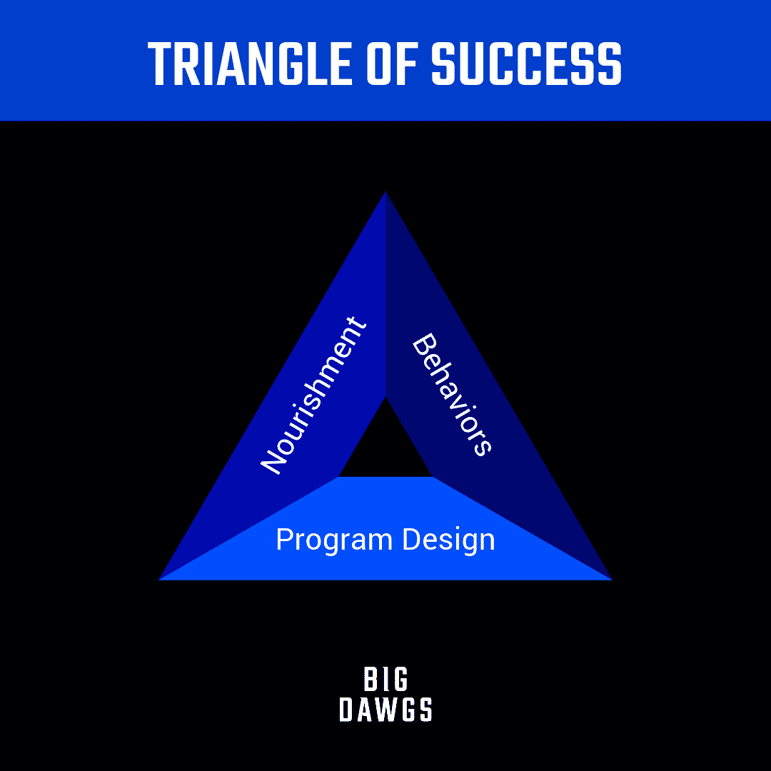 Triangle of Success