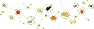 Understanding Food Intolerances For Better Results!